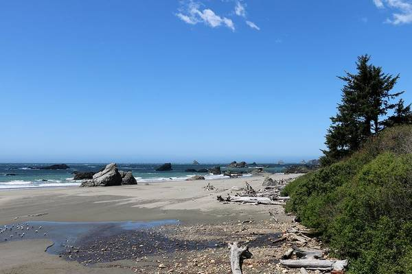 Photograph - Harris Beach State Park In Oregon by Christy Pooschke