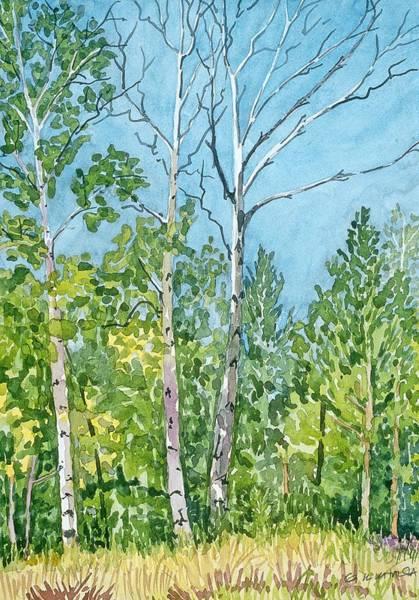 Flagstaff Painting - Hart Prairie Aspens by Gurukirn Khalsa