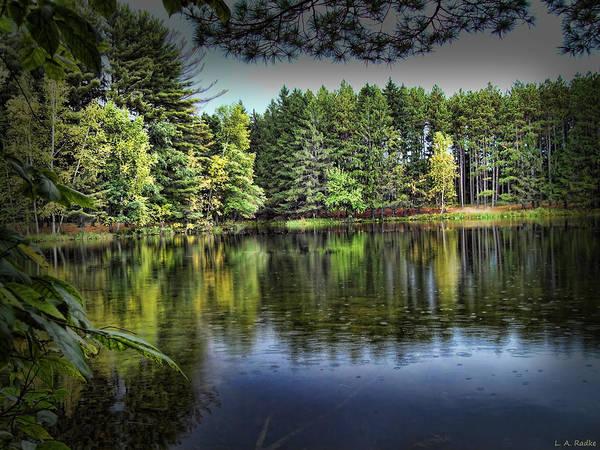 Photograph - Hartman Creek State Park by Lauren Radke