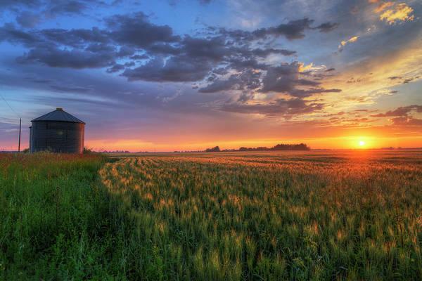 Photograph - Harvest by Dan Jurak