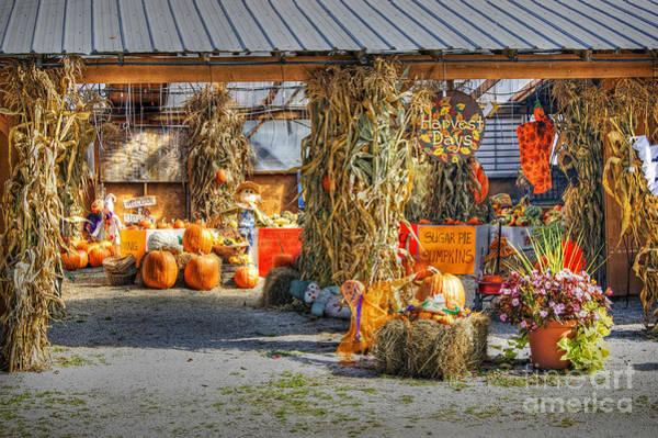 Photograph - Harvest Days by David Birchall
