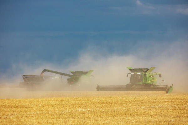 Photograph - Harvest In Dust by Todd Klassy