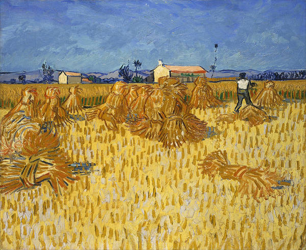 Wall Art - Painting - Harvest In Provence At Wheat Fields  by Vincent van Gogh