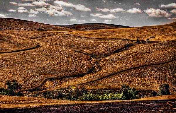 Photograph - Harvest by Ken Ketchum