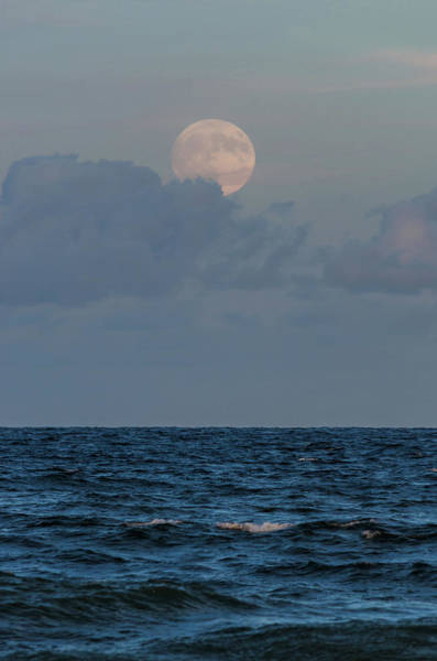 Photograph - Harvest Moon Blues New Jersey by Terry DeLuco