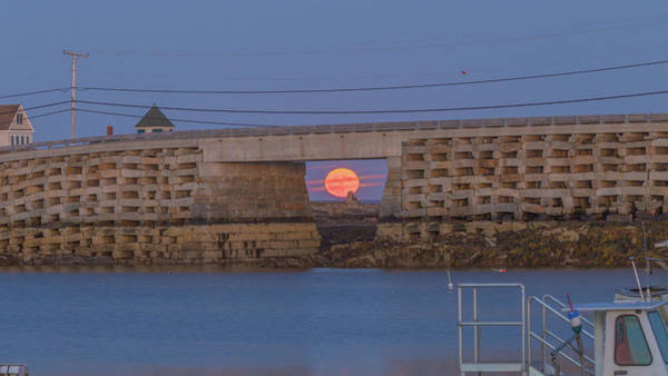 Photograph - Harvest Moon Over Harpswell by David Hufstader
