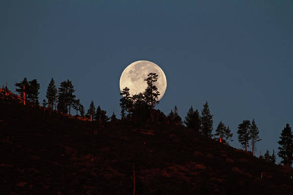 Moonscape Photograph - Harvest Moonset by Donna Kennedy