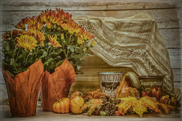 Photograph - Harvest Still Life by Teresa Wilson