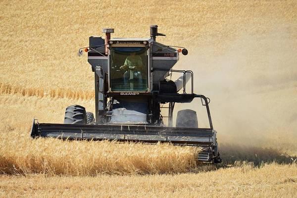 Photograph - Harvester by KJ Swan