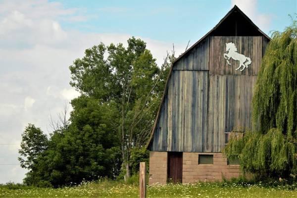 0017 - Hassler Lake Road Horse Barn Art Print