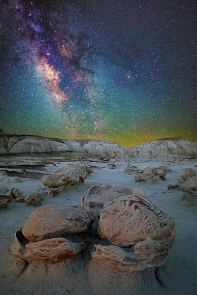 Hatched By The Stars Art Print