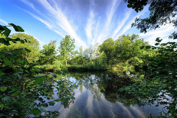 Photograph - Hatfield Forest Lake England Essex Summer by John Williams