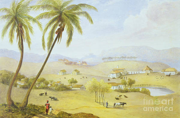 Central America Painting - Haughton Court - Hanover Jamaica by James Hakewill
