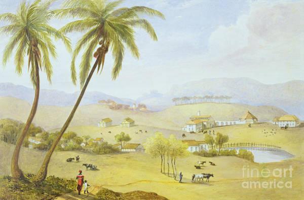Jamaican Wall Art - Painting - Haughton Court - Hanover Jamaica by James Hakewill
