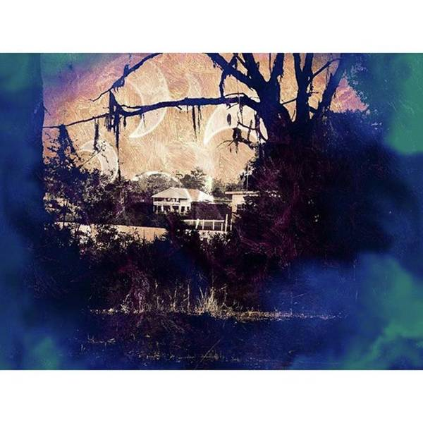 Photograph - Haunted In by Cheray Dillon