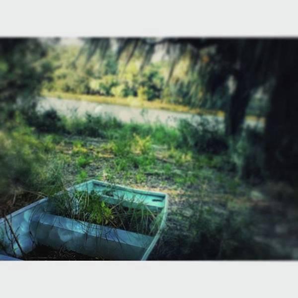 Photograph - Haunted In Louisiana #abandonedplaces by Cheray Dillon