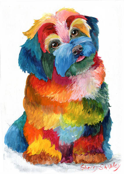 Painting - Hava Puppy Havanese by Sherry Shipley