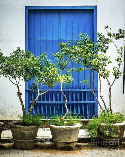 Wall Art - Photograph - Havana Blue by Perry Webster