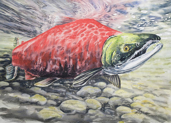 Spawn Painting - Have A Sockeye by Link Jackson