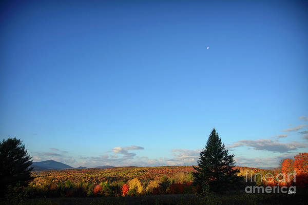 Photograph - Havest Moon by Alana Ranney
