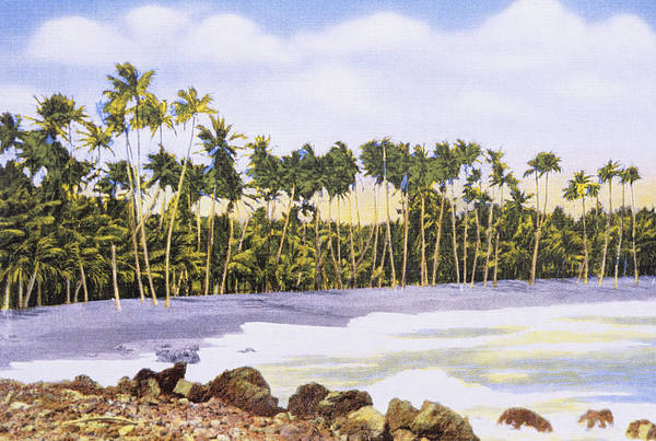 Archival Painting - Hawaii Postcard by Hawaiian Legacy Archive - Printscapes