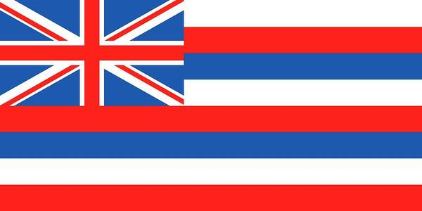 Painting - Hawaii State Flag by American School