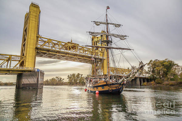 Photograph - Hawaiian Chieftain   by Charles Garcia
