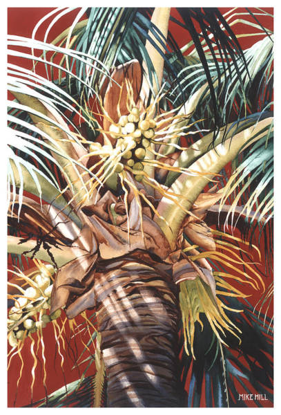 Coconut Painting - Hawaiian Fireworks by Mike Hill