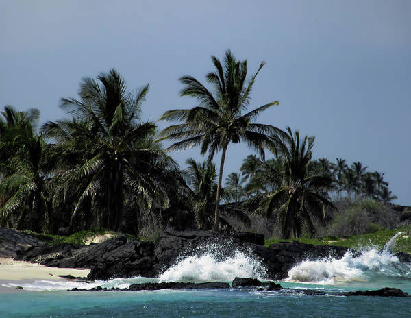 Photograph - Hawaiian Paradise by Pamela Walton