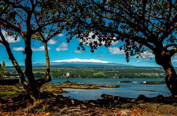 Photograph - Hawaiian Snow by Randy Sylvia