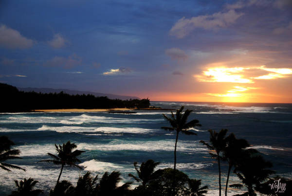 Hawaiin Sunset Art Print by Thea Wolff
