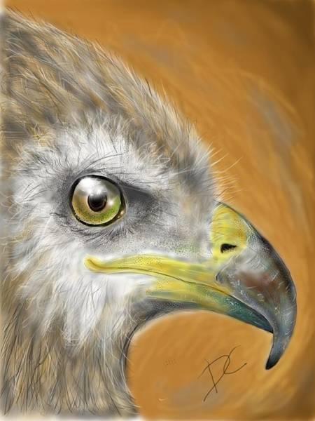 Digital Art - Hawk by Darren Cannell