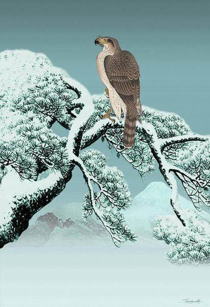 Digital Art - Hawk On Snowy Pine by M Spadecaller