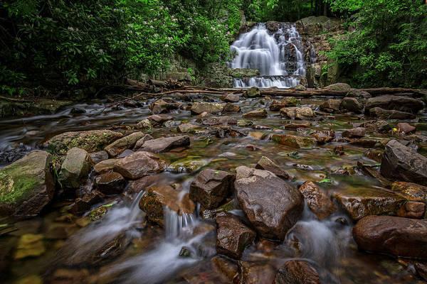 Hawk Creek Photograph - Hawk Run by Rick Berk