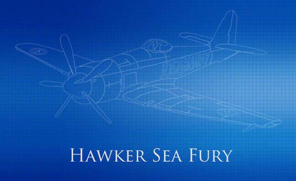 Hawker Sea Fury Photograph - Hawker Sea Fury Blueprint by Brooke Roby