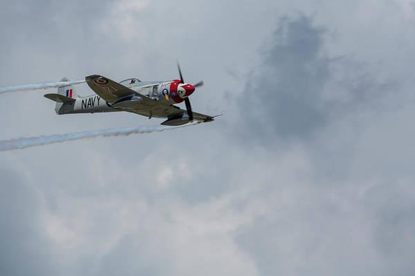 Hawker Sea Fury Photograph - Hawker Sea Fury Fb-11 Airplane 3 by John Brueske