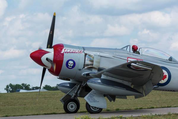 Hawker Sea Fury Photograph - Hawker Sea Fury Fb-11 Airplane 5 by John Brueske