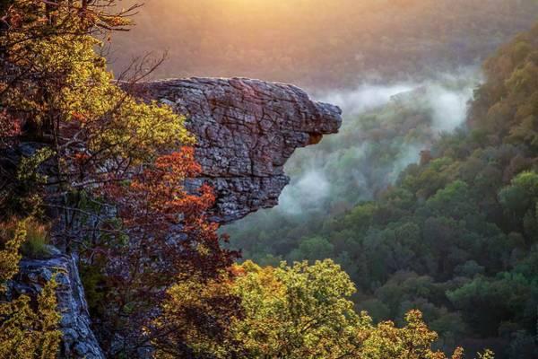 Photograph -  Ozarks Hawksbill Crag by Harriet Feagin