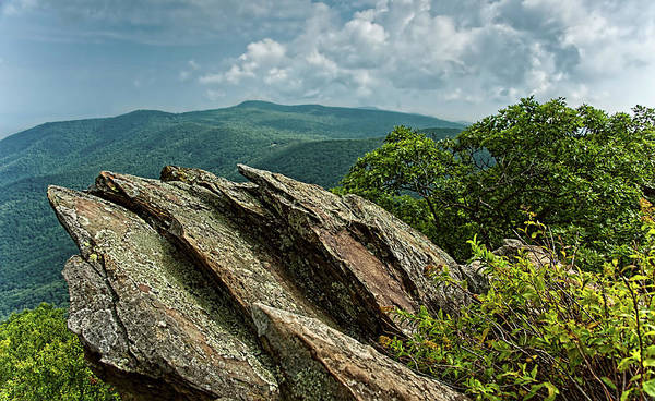 Photograph -  Hawksbill Mountain by Lara Ellis