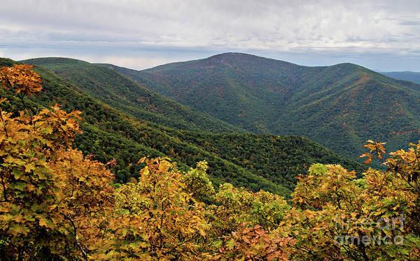 Photograph - Hawksbill Mountain, Shenandoah National Park, Virginia -94355 by John Bald