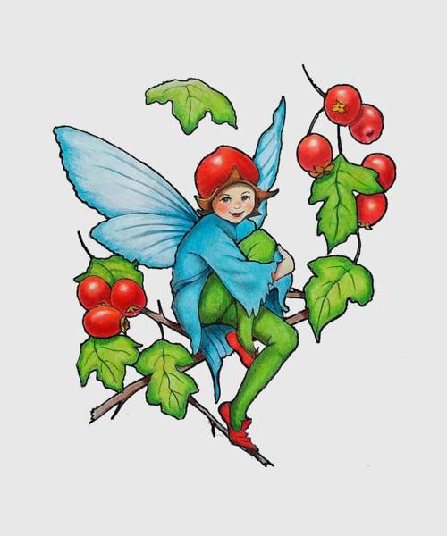 Wall Art - Drawing - Hawthorn Fairy After Cicely Mary Barker by Joyce Geleynse