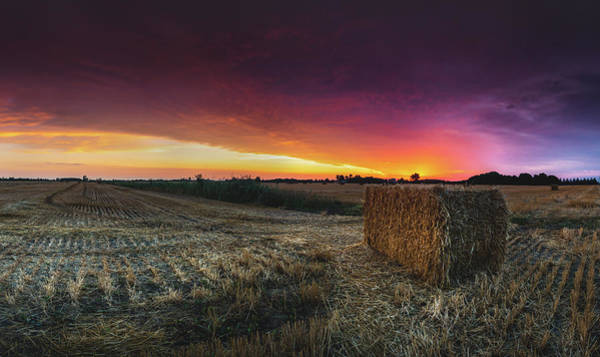 Wall Art - Photograph - Hay At Sunrise - Panorama by Cale Best