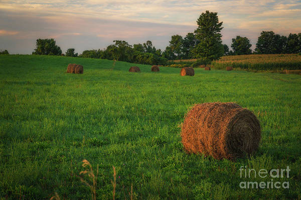 Hey Photograph - Hay Bail Sunrise  by Michael Ver Sprill