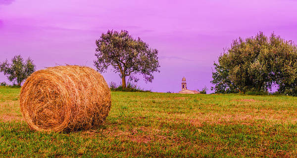 Photograph - Hay Bale And Campanile. Evening In Lombardy by Dmytro Korol
