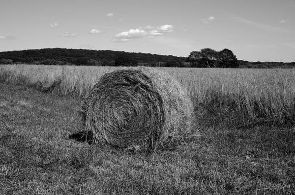 Photograph - Hay Bale I by Dave Gordon