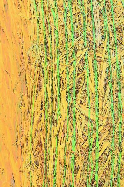 Photograph - Hay Bale Twine 7340 by Jerry Sodorff