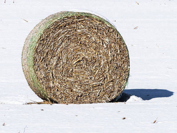 Photograph - Hay Bale - Wisconsin by Steven Ralser