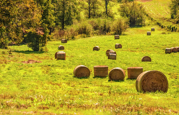 Digital Art - Hay Bales 2 by Mick Burkey