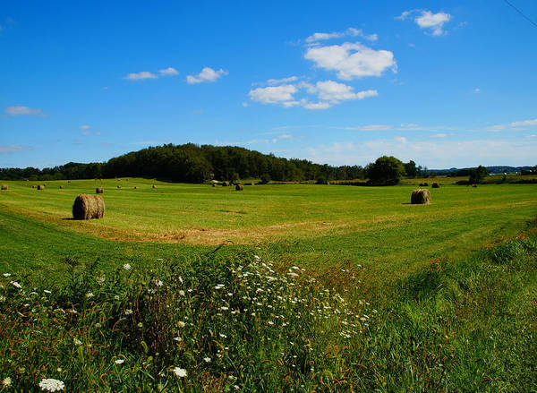 Photograph - Hay Bales In The Country by Mike Murdock
