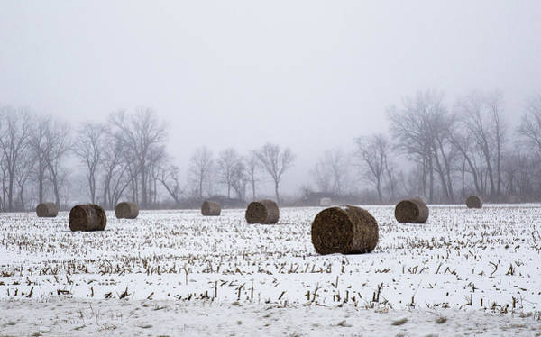 Photograph - Hay Bales In The Snow by Pete Hendley